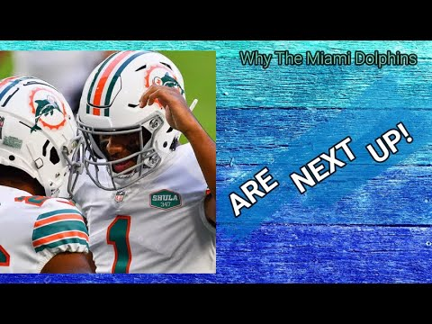 Why the miami dolphins will make the playoffs!