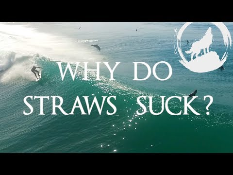 Why we should get rid of plastic straws - turtles, dolphins & reasons to skip the straw!!