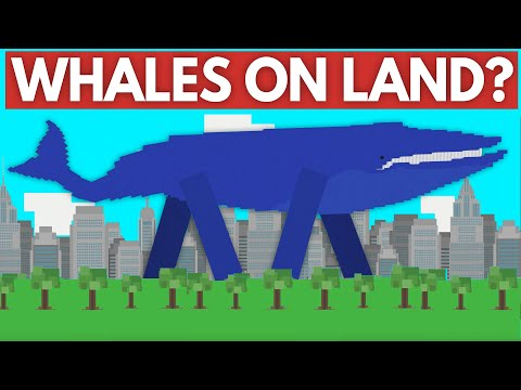 What if whales got their legs back?